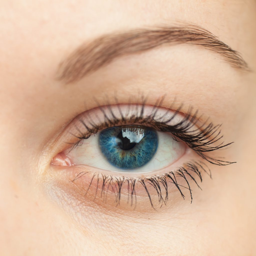shutterstock_124547932-min-1024x1024 Eyelid Surgery in Scottsdale